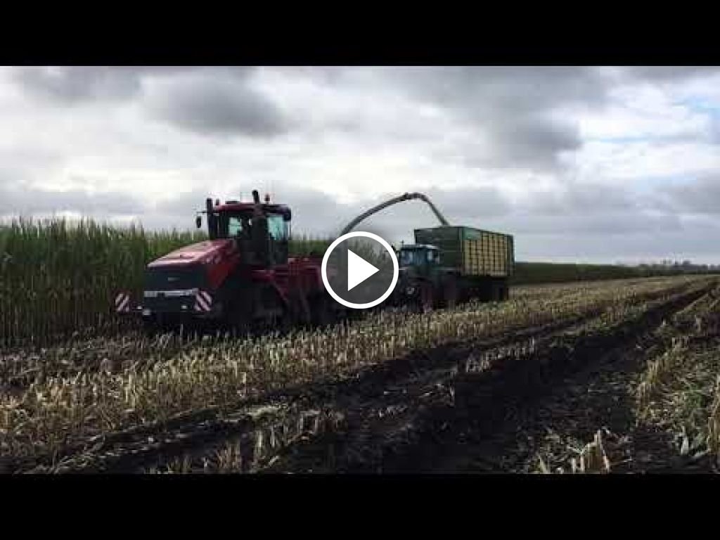 Wideo Case IH Quadtrac 550