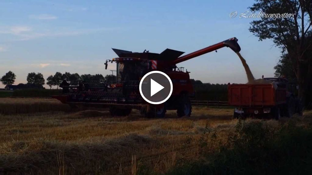 Wideo Case IH Axial Flow 8120