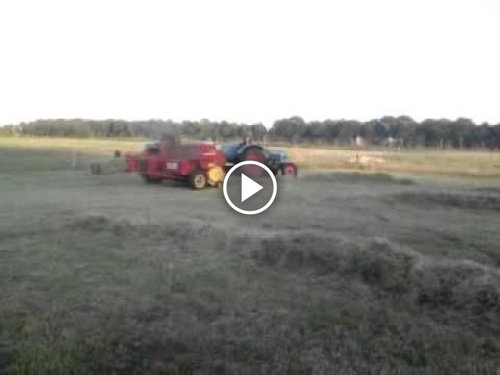 Video Eicher Königstiger
