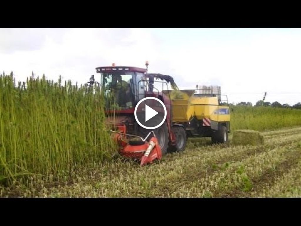 Wideo Case IH CHX 520