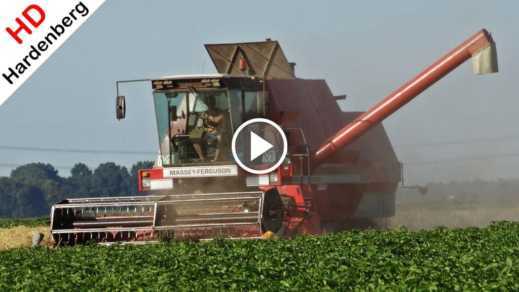 Vidéo Massey Ferguson 31