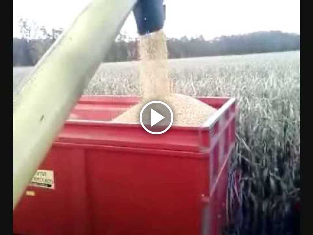 Video New Holland 100/90