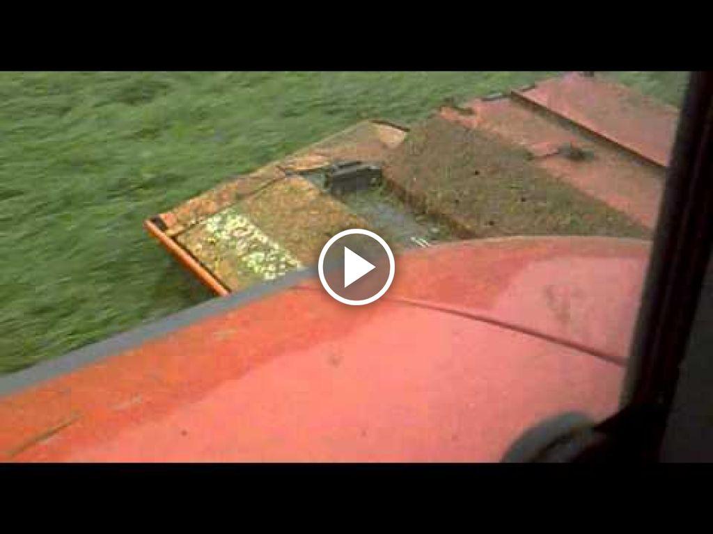 Videó Steyr CVT 6155
