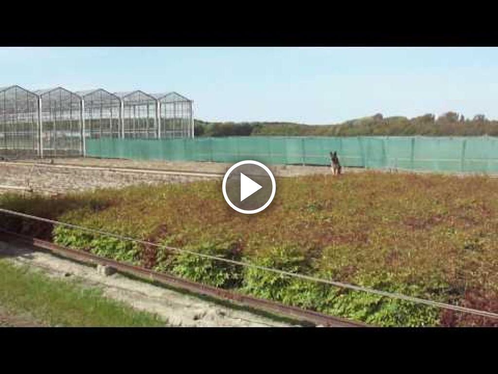 Video Massey Ferguson 5445