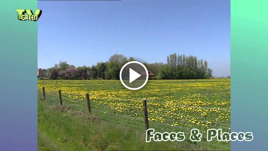 Video Valmet 355