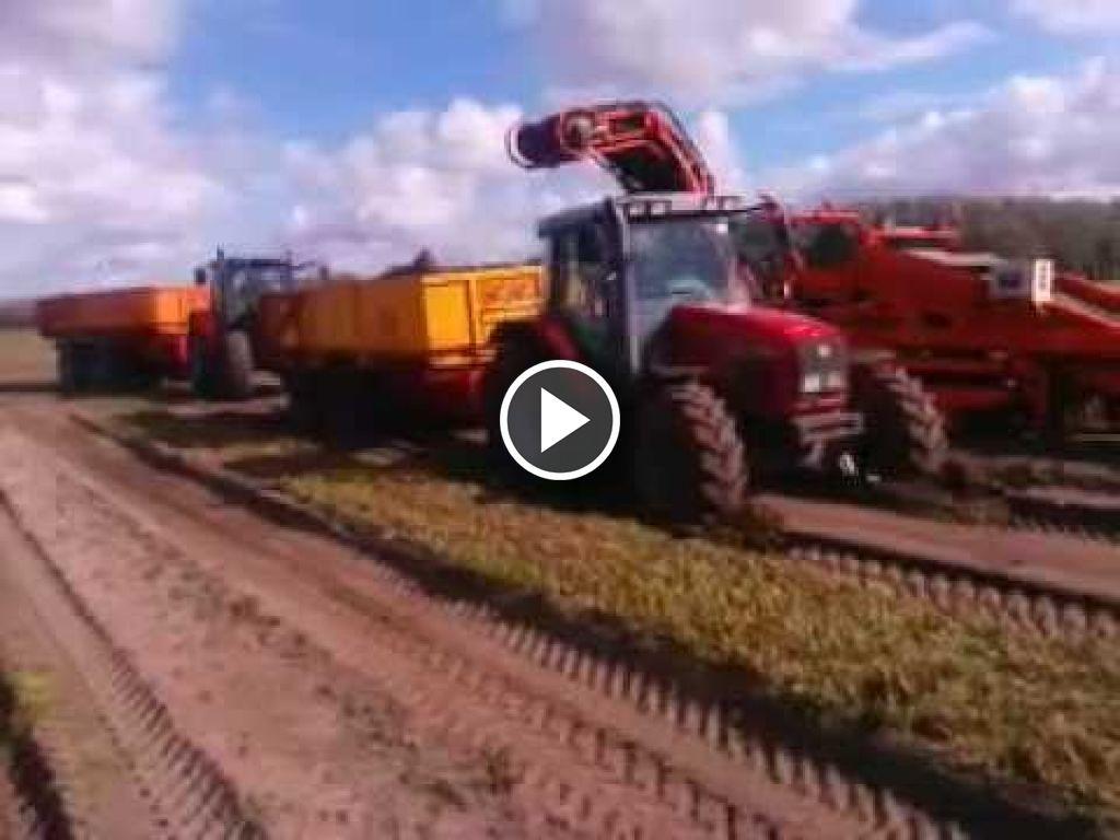 Vidéo Massey Ferguson 6265