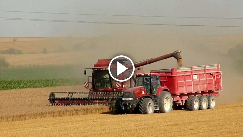Wideo Case IH Axial Flow 2388