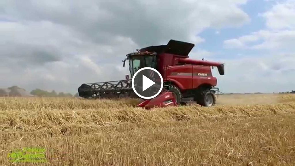 Wideo Case IH Axial Flow 6130