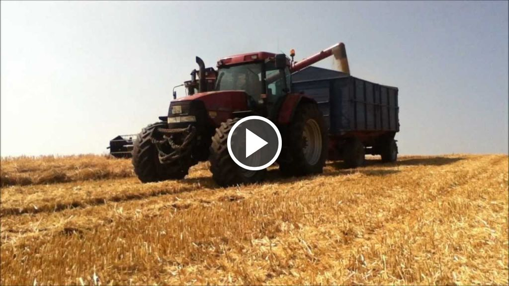 Wideo Case IH Axial Flow 2188
