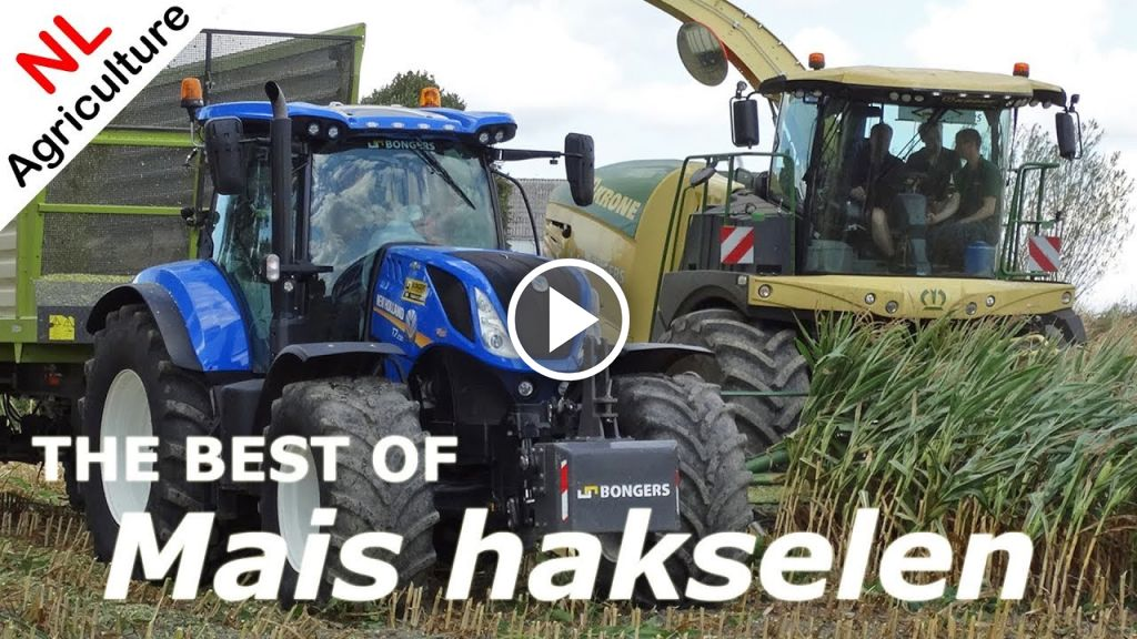 Wideo Fendt Dieselross