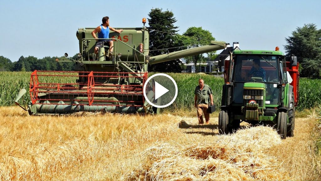 Video Claas Matador Gigant
