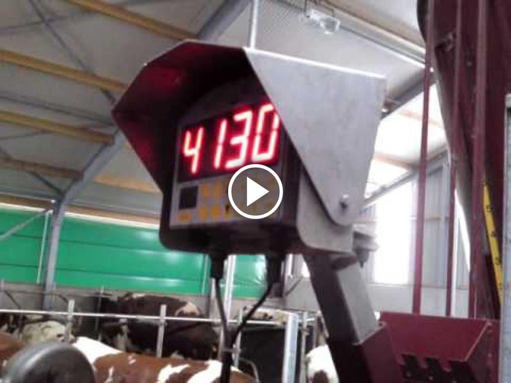 Wideo Case IH Maxxum MXU 125