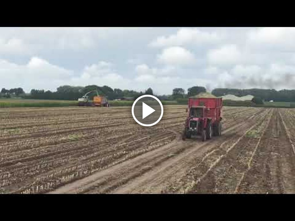 Vidéo Massey Ferguson 590
