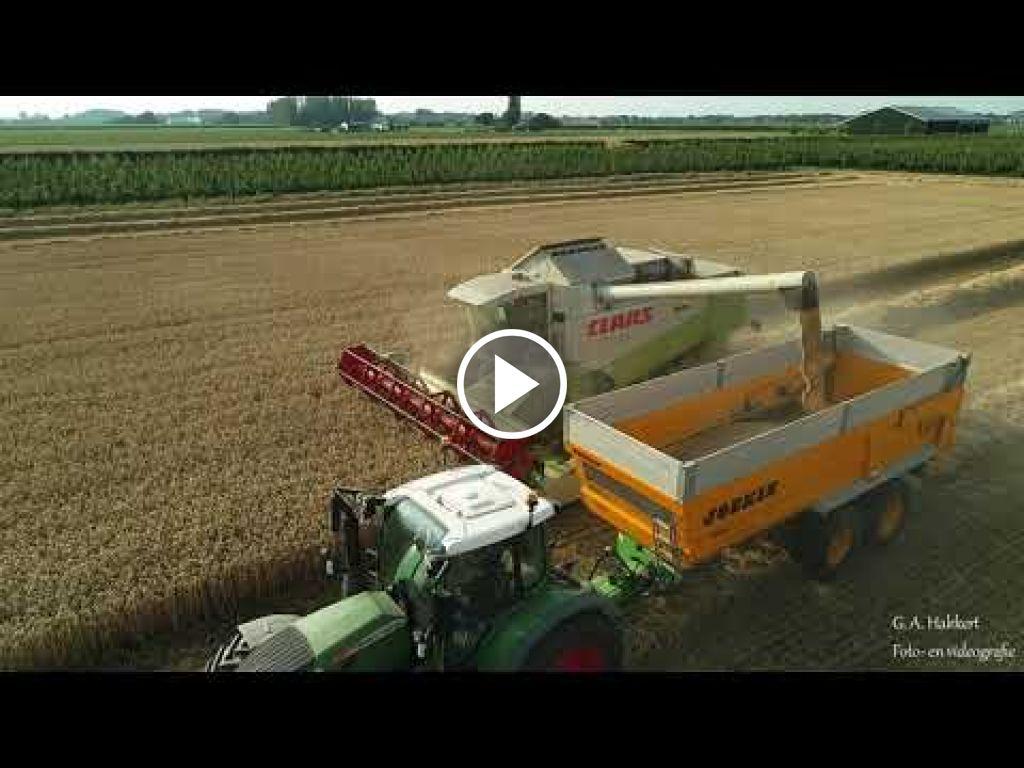 Video Claas Lexion 440