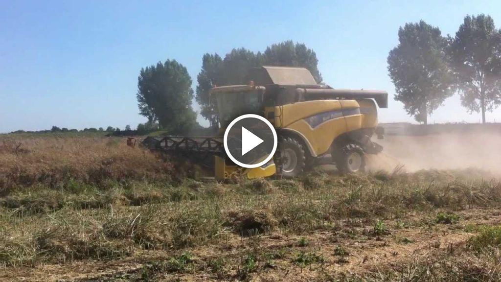 Video New Holland CX 840