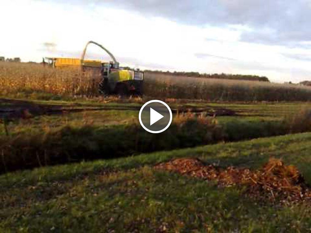 Video Claas Jaguar 900