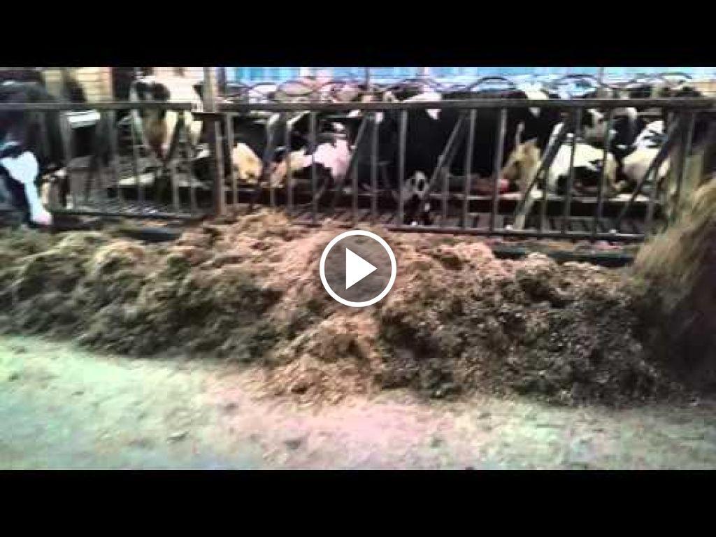 Vidéo Massey Ferguson 168