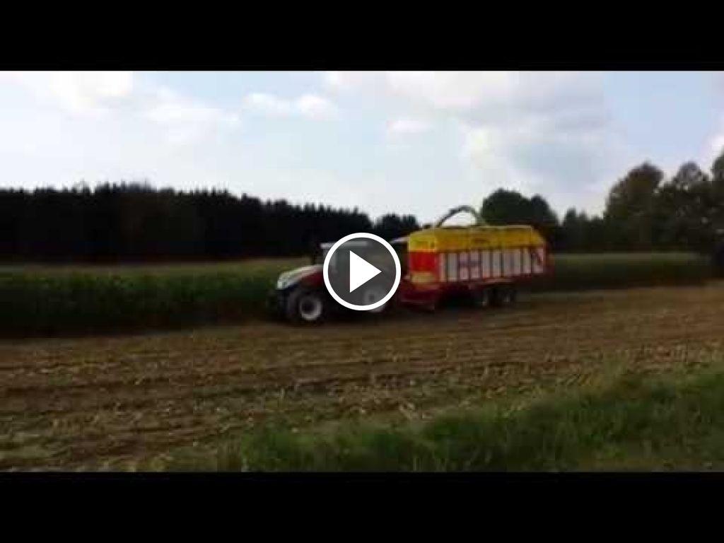 Video Steyr Terrus 6300