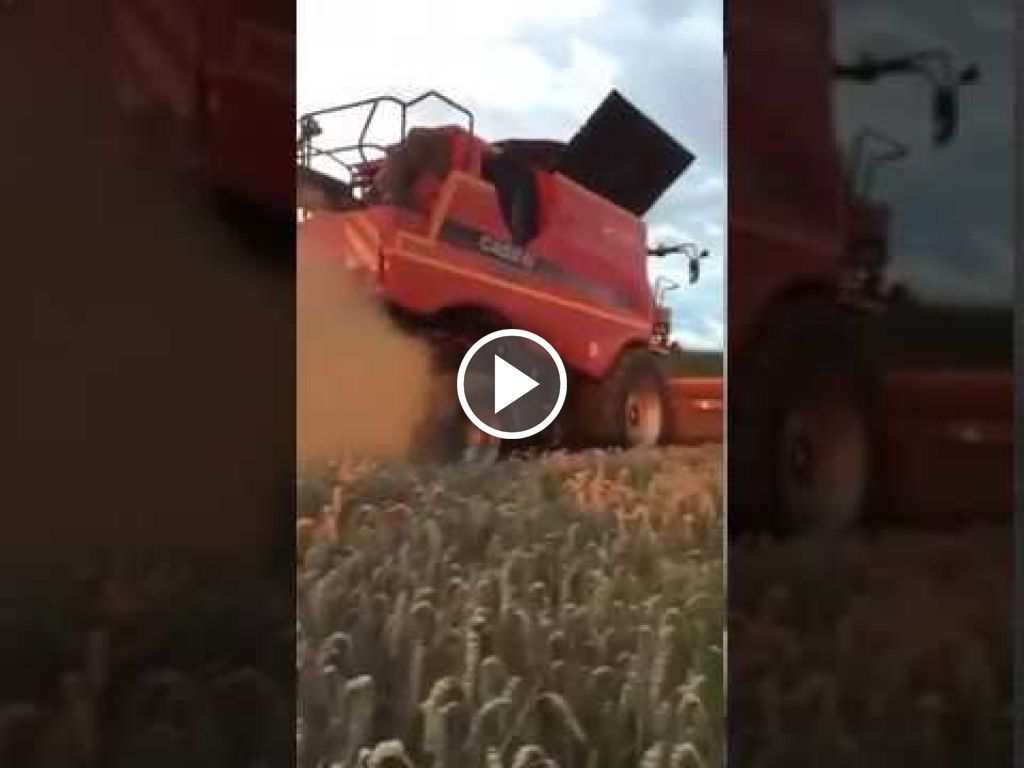 Wideo Case IH Axial Flow 7230