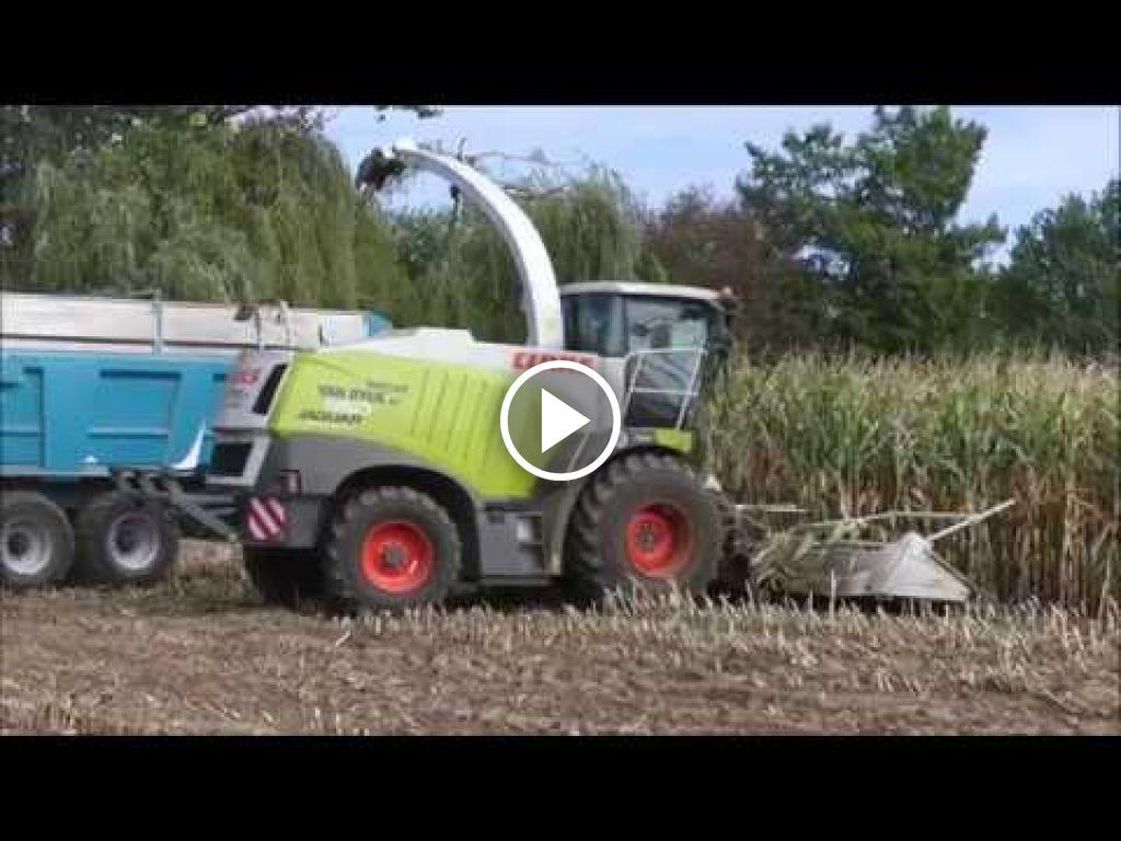 Video Claas Jaguar 950
