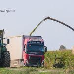 New Holland FR 920
