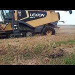Cat Lexion 595R