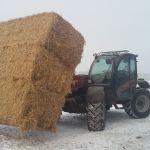 Case IH Farmlift 742 (Verreiker)