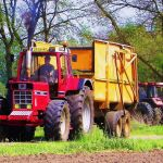 International Harvester 1455