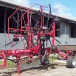 Lely Hibiscus 805 CD